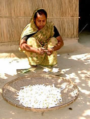 A woman making bidi sigarettes